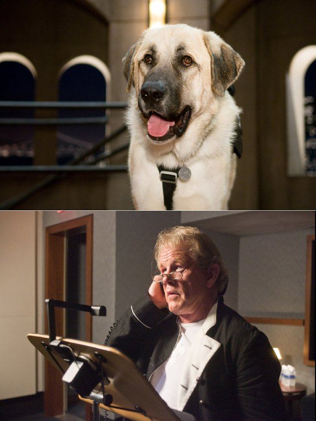 Who Does The Voice Of Lou In Cats And Dogs